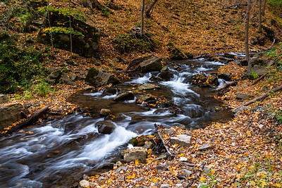 Flowing Stream In Autumn
