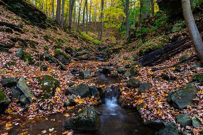 Dundas Valley Stream