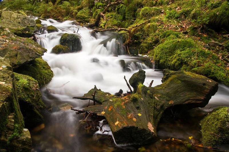 WATERFALLS -TARN HOWS,LAKE DISTRICT   -28