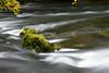 RIVER ROTHAY - CLAPPERSGATE  LAKE DISTRICT -18