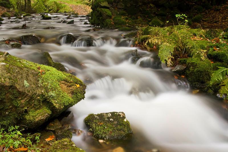 WATERFALLS-TARN HOWS-LAKE DISTRICT   -24