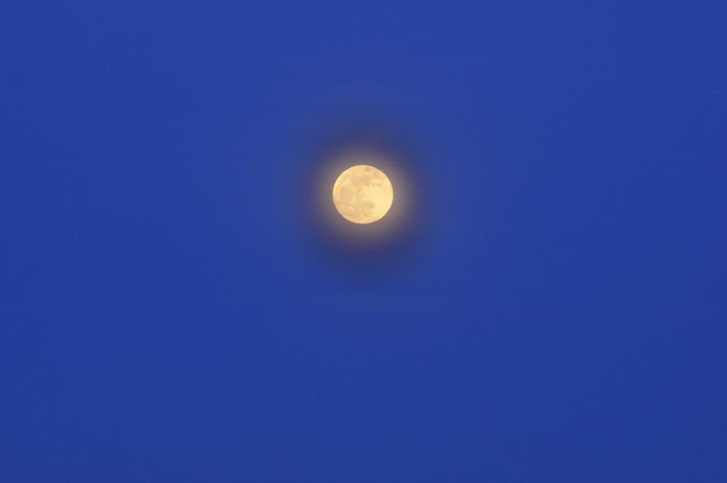 Full Moon #1 - Friday, January 29, 2010