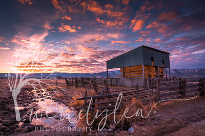wlc Sunrise SF PR 132018-Edit
