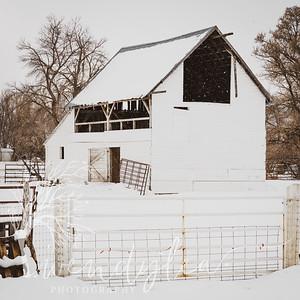 wlc barns 01172020452020
