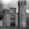 629  B Castle in Killarney NP BW Soft V