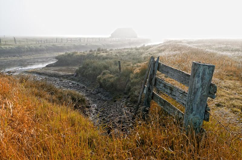 Arcata Bottoms 2012-06 010 Humboldt-CA-USA_nik-TC&IS