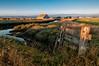 Arcata Bottoms 2012-08 001 Humboldt-CA-USA_TM