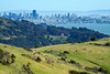 Southerly view from the Old St.Hilary Preserve on the Tiburon Ridge to Angel Island and beyond to San Francisco, CA that will change forever if Easton Point development is allowed to go forward with 32 giantic homes on this hillside. May 2010 -