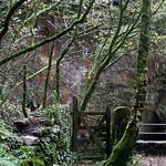 Kennall Vale Gate