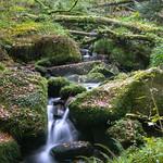 Kennall Vale Stream