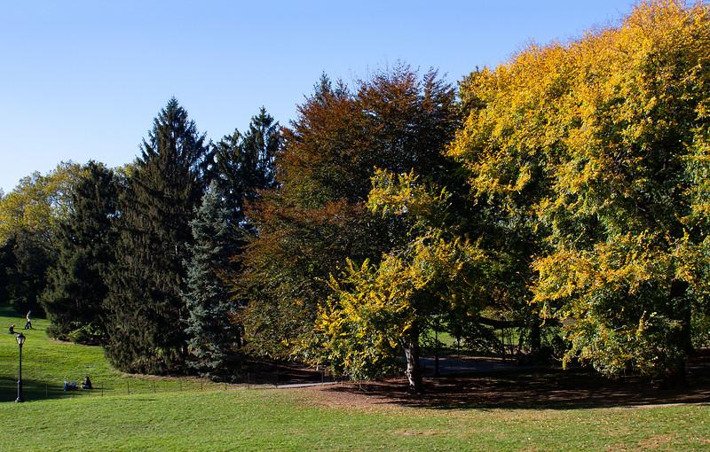 New York - Central Park Autumn Colour, 23-10-2008 (IMG_2542) 4k