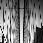 New York - Brooklyn Bridge Support Wires, 26-10-2008 (IMG_2964) Nik SEP2 - EV-1 4k