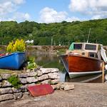 Boats at Golant