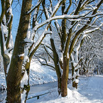 Marsden Canal Side Snow Walk