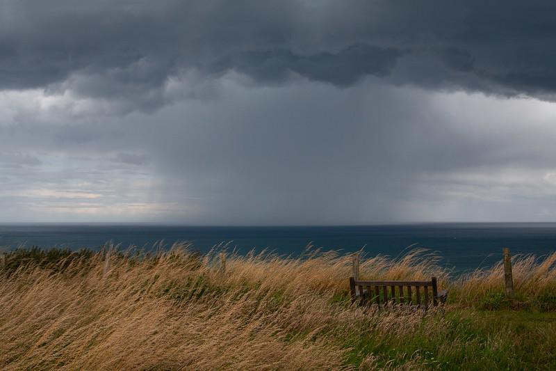 Bempton Storm