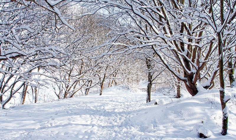 Marsden Snow Walk