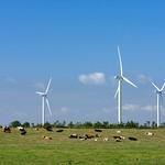 Lissett Wind Farm, 11-8-2010 (IMG_3582) 4k