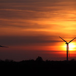 Lissett Windfarm at Sunset