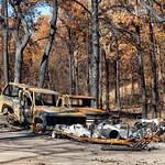 Bastrop Wild Fires aftermath, 3-10-2019 (IMG_3892) 4k