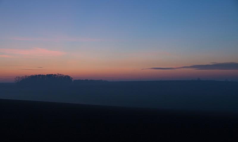 Renshaw Woods Horizon, Towton