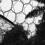Eden Project, 28-6-2013 (IMG_3706) Nik SEP2 - Full Dynamic Smooth 4k