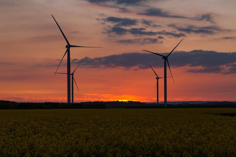 Lissett Wind Farm at Sunset