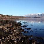 Ben Nevis & Loch Eil Shoreline