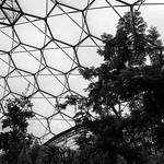 Eden Project, 28-6-2013 (IMG_3727) Nik SEP2 - Full Dynamic Smooth 4k