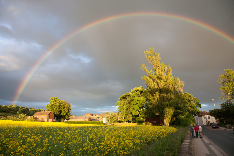 Carleton Rainbow