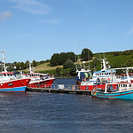 Fishing boats at Kinsale Harbour