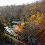 Knaresborough, Autumn Colour over River Nidd