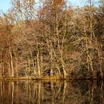 Hartworth Pond Skeleton