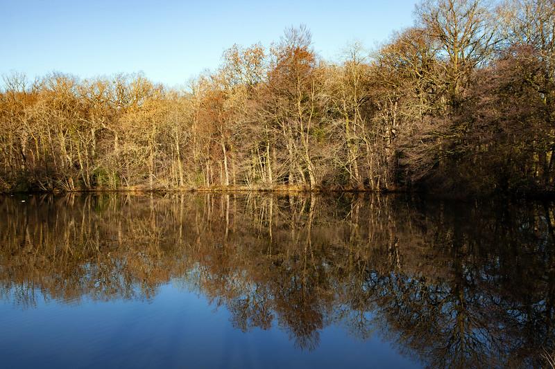 Hartworth Pond Reflection