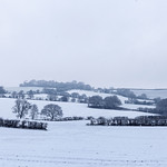 Grimethorpe - Manor Farm, 2-1-2021 (IMG_1169) 4k