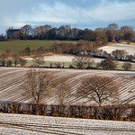 Grimethorpe - Manor Farm, 2-1-2021 (IMG_1139) 4k