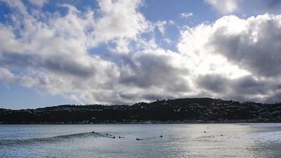 Lyall Bay Surf Wellington