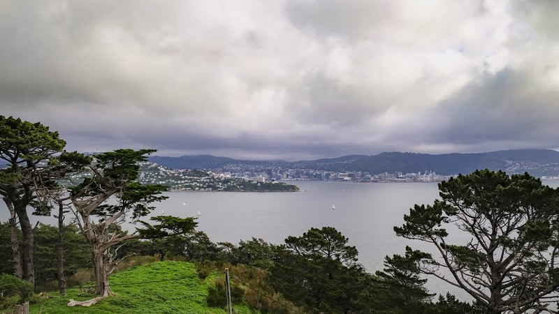 Wellington Harbour from Miramar Peninsula