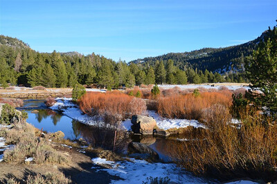 P00157_DSC_0153_West_Fork_of_Carson_River