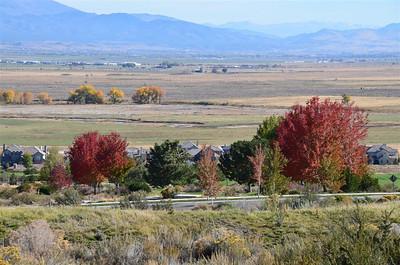 DSC_0067_Carson_Valley
