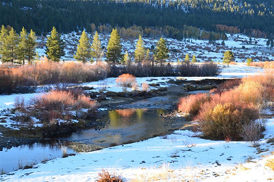 P00171_DSC_0167_West_Fork_of_Carson_River