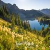 444  G Bear Grass and Eunice Lake