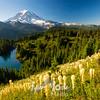 560  G Bear Grass Rainier Eunice Lake and Trail