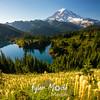 459  G Bear Grass Rainier and Eunice Lake