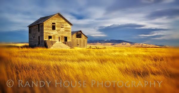 Abandoned farmhouse and barn near Hobson, MT