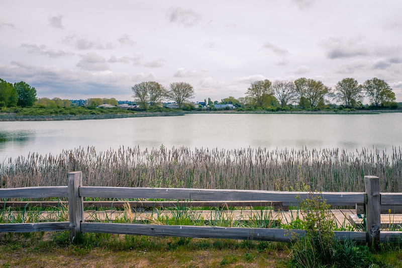 Iona Pond