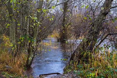 Ponds End