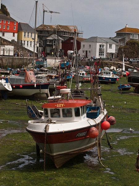 Mevagissey Harbour at low tide. Copyright Peter Drury<br /> Note the wooden posts attached to the side if the boat which keep it upright when the tide is out.