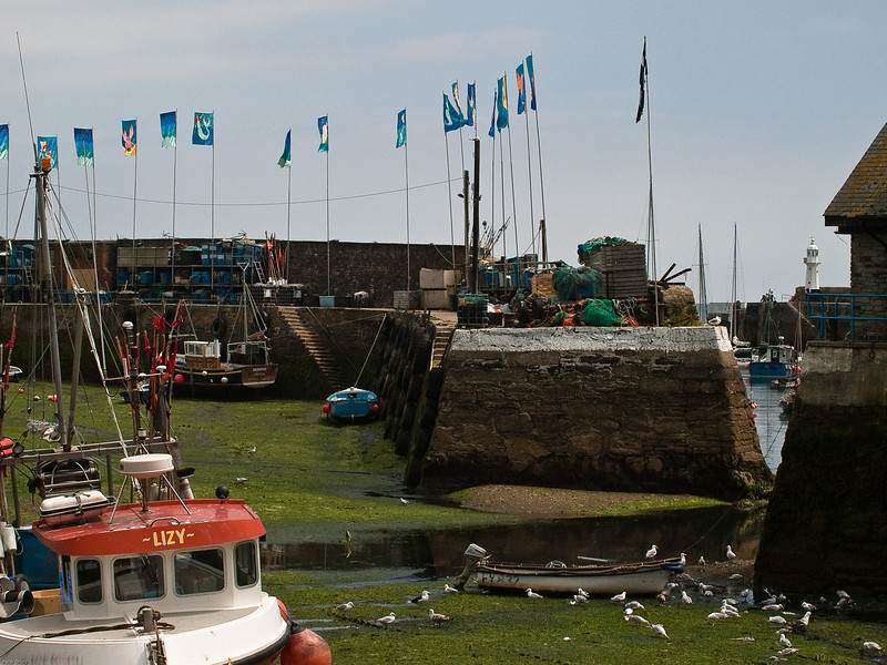 Mevagissey Harbour at low tide. Copyright Peter Drury