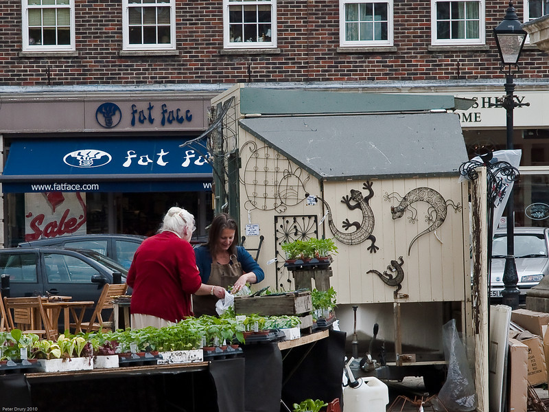 Plant Stall in The Square. Copyright Peter Drury 2010