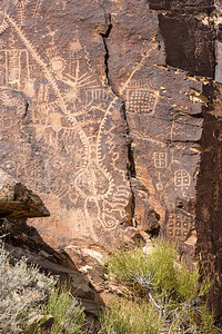 Parowan Gap Petroglyphs and Brigham's Tea, Red Hills, Iron County, Utah